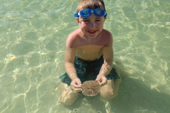 fort-myers-shelling-boat-tour-3