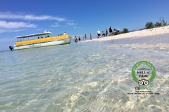 sanibel cruises aip trip advisor